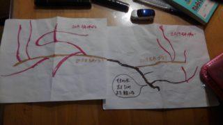 ブドウ枝の絵